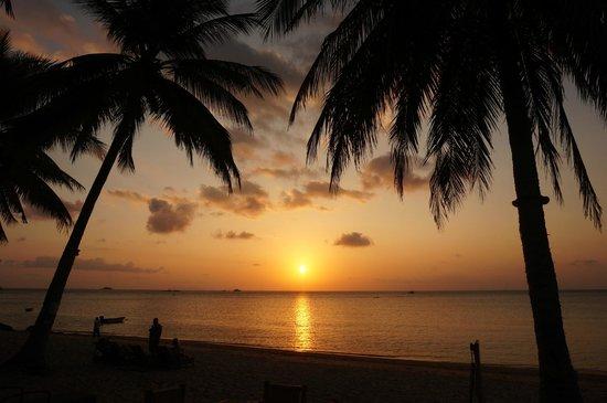 Blue Ocean Garden Beach Resort: Coucher de soleil