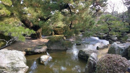 Ohori Park: Japanese Garden