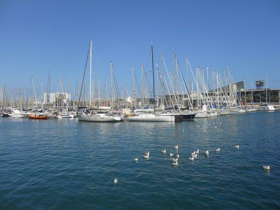 H10 Marina Barcelona Hotel : port de barcelone