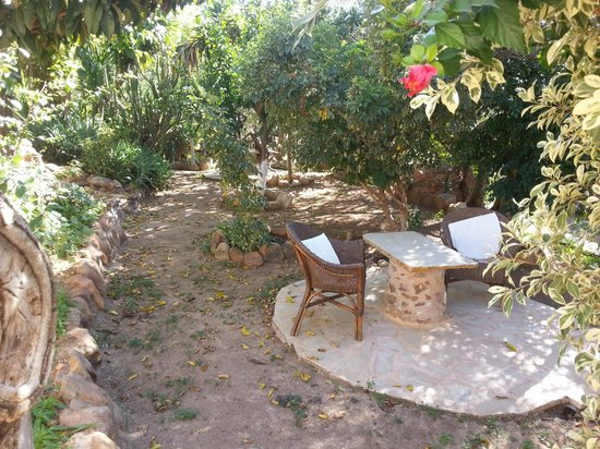 Elia Traditional Guesthouse: Shady courtyard