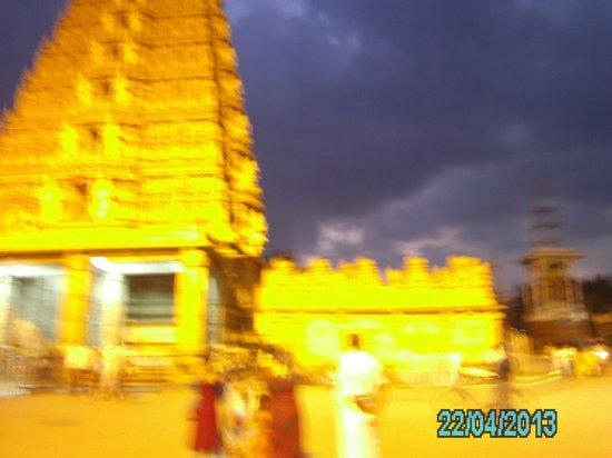 Srikanteshwara Temple: Temple view at night