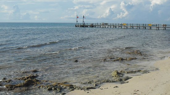 Iberostar Cozumel : El muelle, unico lugar para ver peces con el snorkel sin pagar el barco