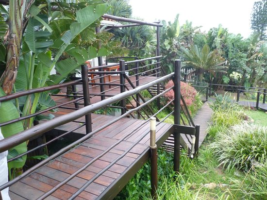 African Peninsula Guest House: decking