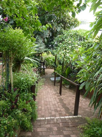 African Peninsula Guest House : grounds