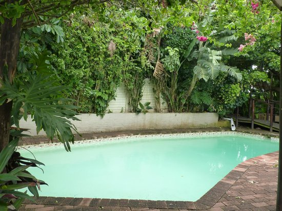 African Peninsula Guest House: Pool