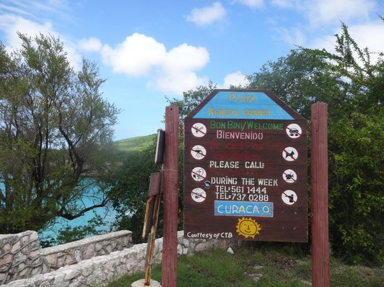 Kenepa Beach: Placa na chegada
