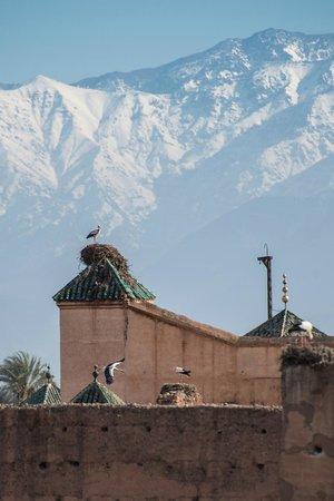 Riad Dar Anika: Blick von Dachterrasse Richtung Atlas (Tele)