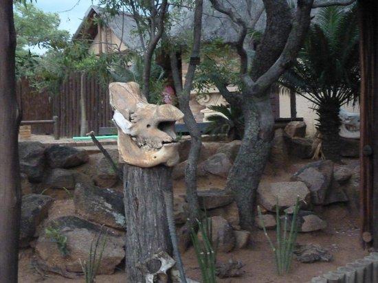 Sable Lodge: grounds