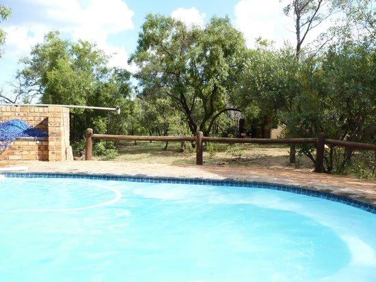 Sable Lodge: pool