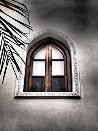 Riad Jonan : Window