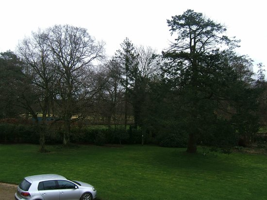 The Norfolk Mead Hotel: Winter trees and view from Chanterelle Room.