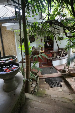 Shangri-La: Terrasse