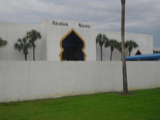 Vacation Village at Parkway : Vista para Arabian Night