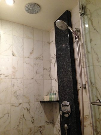 Grand Hyatt Singapore : Shower stall