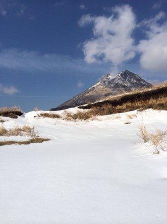 Yufudake: 大雪の後の由布岳 狭霧台より少し上から