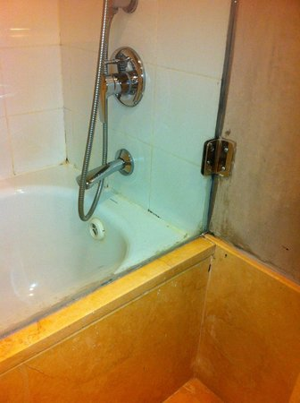 Sea Executive Suites: Bathrooms need some work