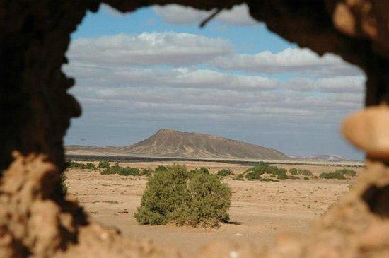 Itrane Sahara: Environnement