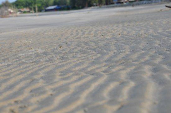 Seri Bayu Resort : Sandy Beach