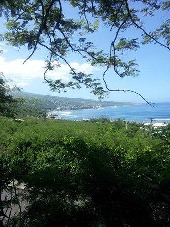 Iloha Seaview Hotel: Vue depuis le bungalow