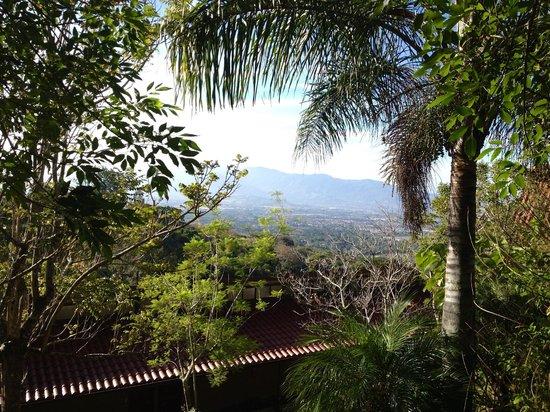Pura Vida Retreat & Spa: View from the walkway.
