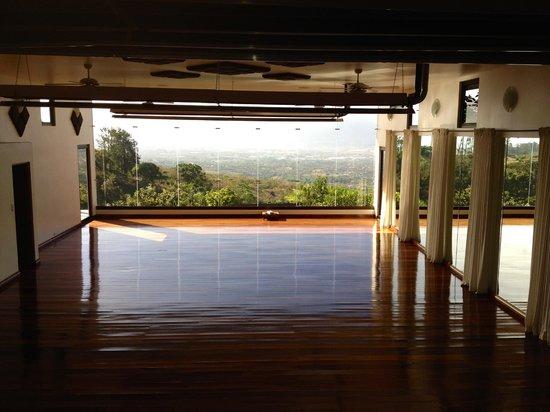 Pura Vida Retreat & Spa: View from the yoga studio.