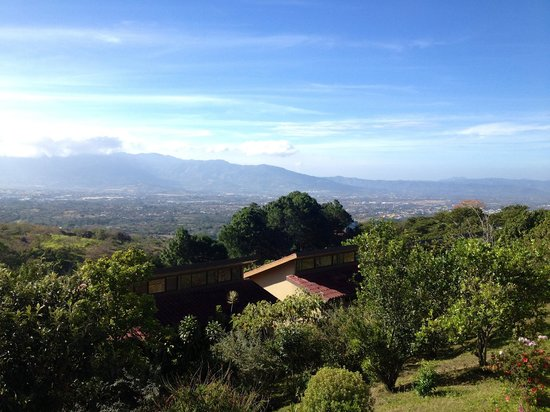 Pura Vida Retreat & Spa: The view from the yoga studio.