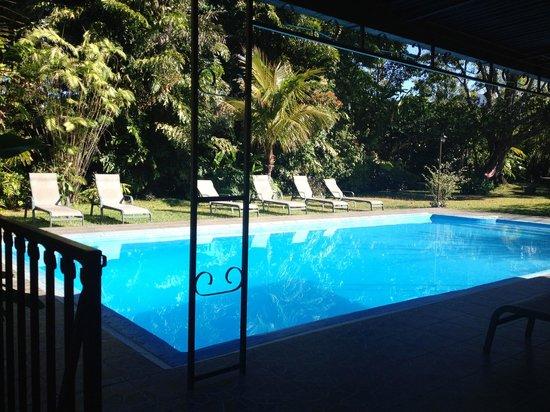 Pura Vida Retreat & Spa : The pool