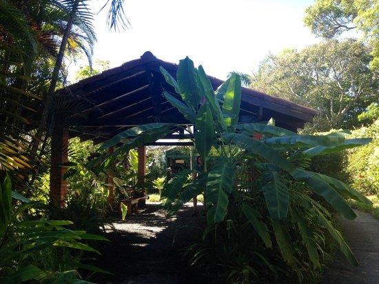 Pura Vida Retreat & Spa : The front entrance.
