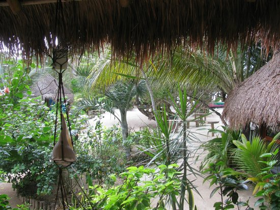 Casa Takywara: grounds