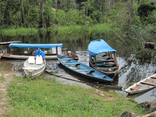 Amazon Turtle Lodge: Our boat (Left one)