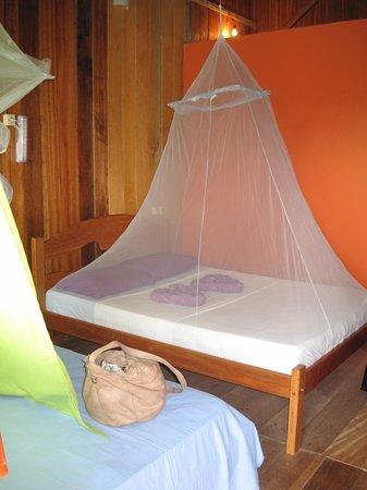 Amazon Turtle Lodge : Our room