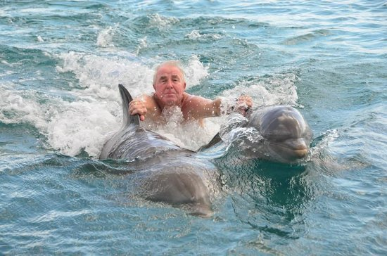 Dolphin Academy Curacao : By far, the most exciting experience.