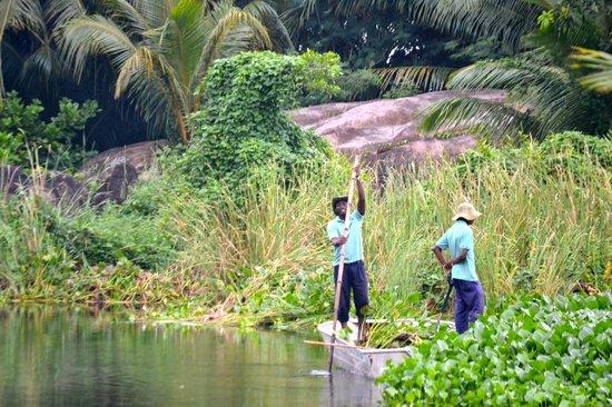 Kempinski Seychelles Resort: Hotel gardens