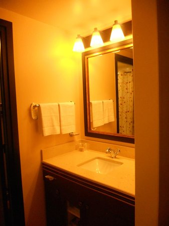 Disney's Sequoia Lodge : Sink and closet area