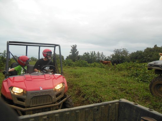 ATV Outfitters Hawaii: husband and son following behind me...
