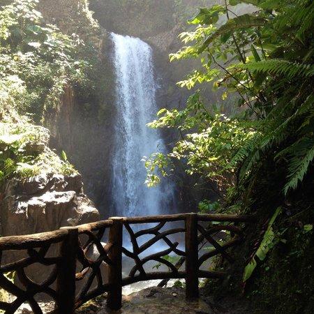 La Paz Waterfall Gardens: Waterfalls
