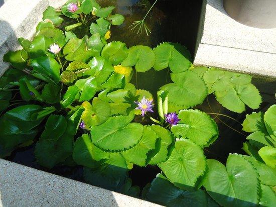 Pullman Phuket Panwa Beach Resort : flowers near Azur restaurant