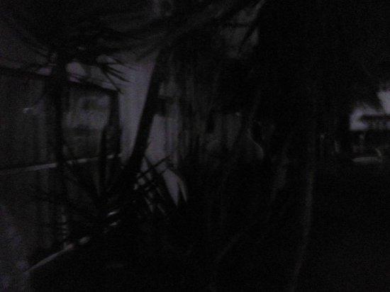 LD Le Flamboyant: Ventana de la habitación, día sin luz y agua