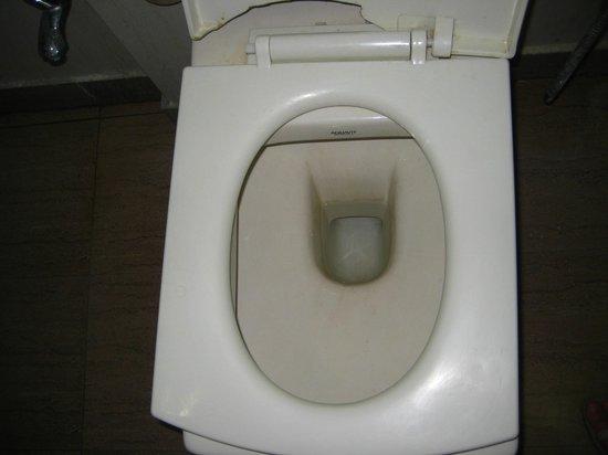 Hotel Shiv Dev International: WC - no comment