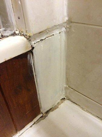 The Stukeleys Country Hotel: Bathroom finish