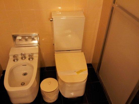 Hotel Plaza Blumenau: Veja as peças do banheiro
