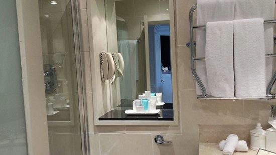 The Merrion Hotel: The Bathroom