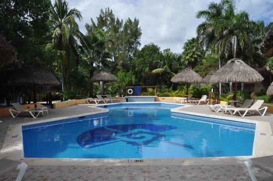 Mahekal Beach Resort: pool by bar