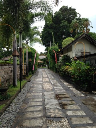 Tamukami Hotel: Driveway leading out to street