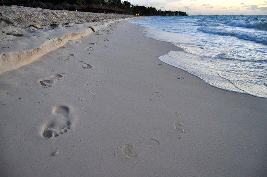 Mahekal Beach Resort: beach