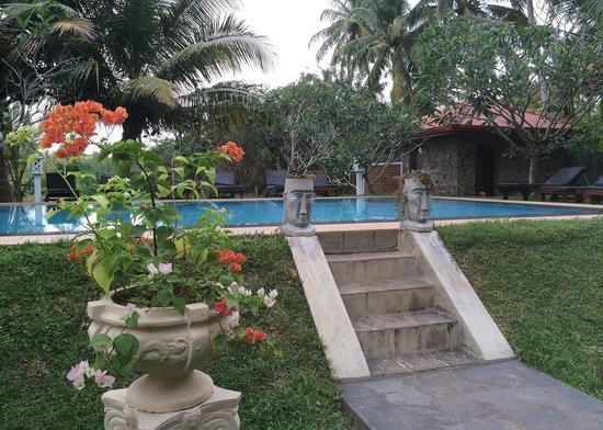 Shangri-Lanka Villa: Lovely Garden