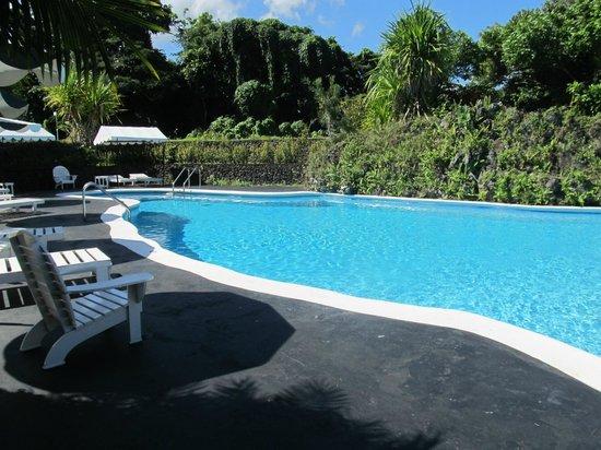 Jamaica Palace Hotel: pool