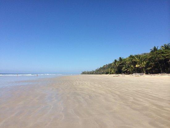 El Rey Patricio: Playa El Rey San Patricio