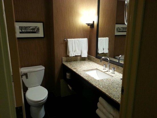 Hilton Toronto: Hilton bathroom