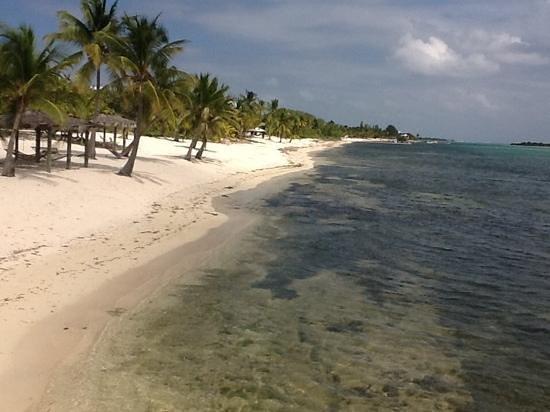 Little Cayman Beach Resort : View from boat dock